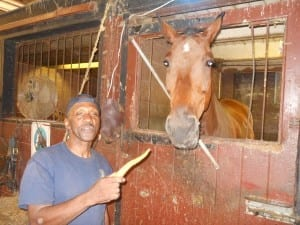 Alumni member Dave Malone feeds carrots to C.P.D. Mounted Horse Paco