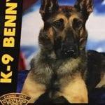 K-9 Benny