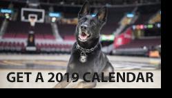 2019 dog and pony show calendar preview box