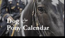 2020 Dog & Pony Calendar